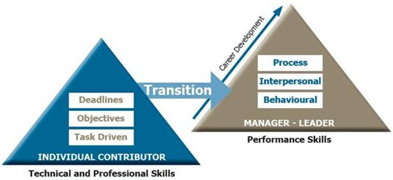 skillogy-transition leadership