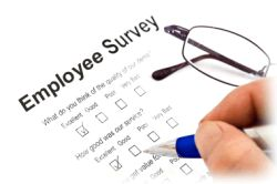 employee_survey_sm